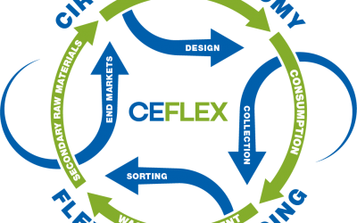 CEFLEX | During The Pandemic